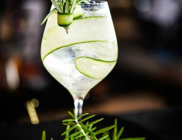 Gin Tônica com Pepino